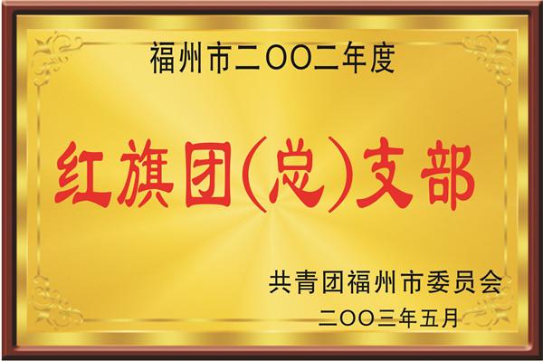 福州市红旗团(总)支部2003年